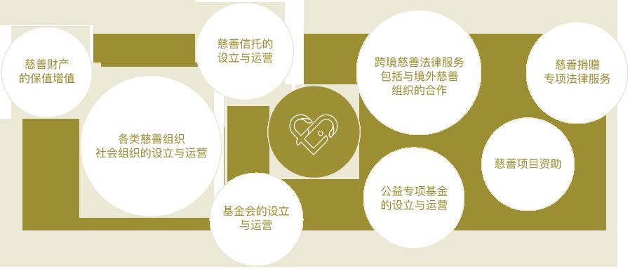 我们提供的服务覆盖慈善家慈善实践的各个方面